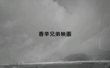 IMG_20130125_1237380001.jpg