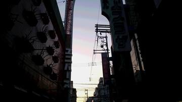 DSC_3779.JPG