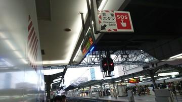 DSC_3024.JPG